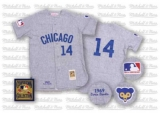 Mitchell and Ness Chicago Cubs #14 Ernie Banks Stitched Grey Throwback MLB Jersey