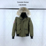 Canada Goose Down Jaket 01 With Removable Real coyote fur ruff Women-BY (6)