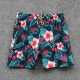 2019 Vilebrequin beach pants man M-2XL (21)