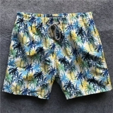 2019 Vilebrequin beach pants man M-2XL (32)