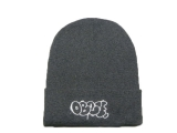 2020.3 Other Brand Beanies-DD (237)
