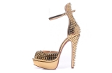 2020.09 Super Max Perfect Christian Louboutin 12cm High Heels Women Shoes -TR (64)